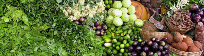 Michigan State University is offering grants to create innovation in the global food system