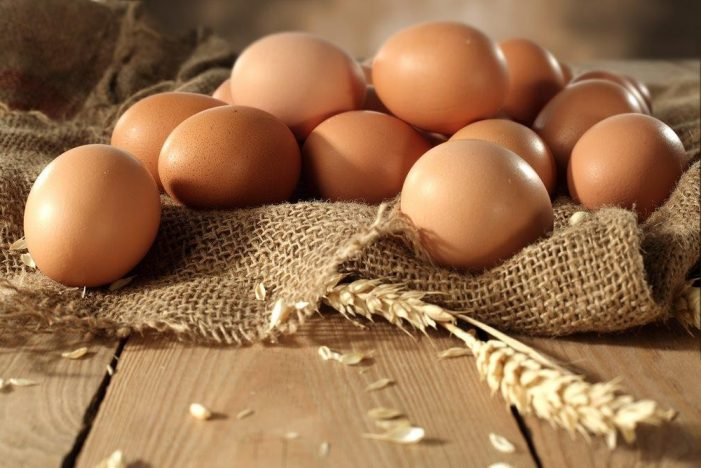 One chicken egg a day may reduce heart disease risk