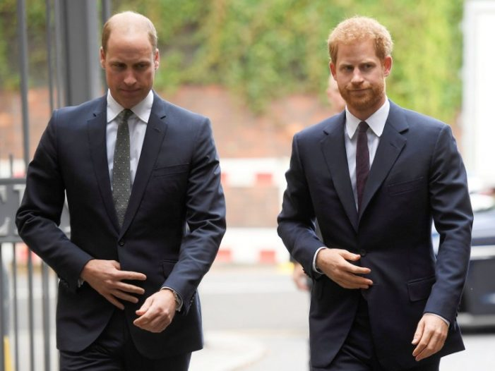 The Royal Feud: Harry Admits to Disagreement with William